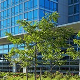 Executive Airport Plaza Hotel